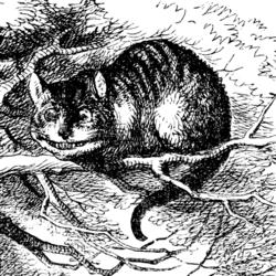 Cheshire Cat Pheline Philosopher or Feline Filosofer?